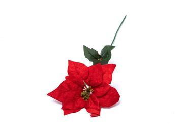 Poinsettia, 70 cm