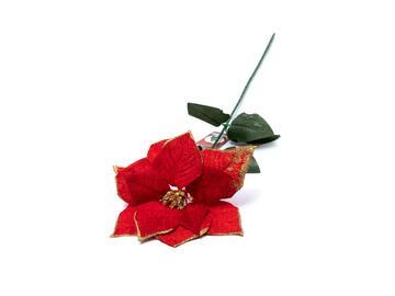 Poinsettia con oro, 70 cm