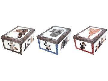 Scatole portatutto in cartone, con immagini di gattini, 51x37x24 cm.