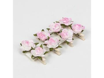 8 rosa alba clip